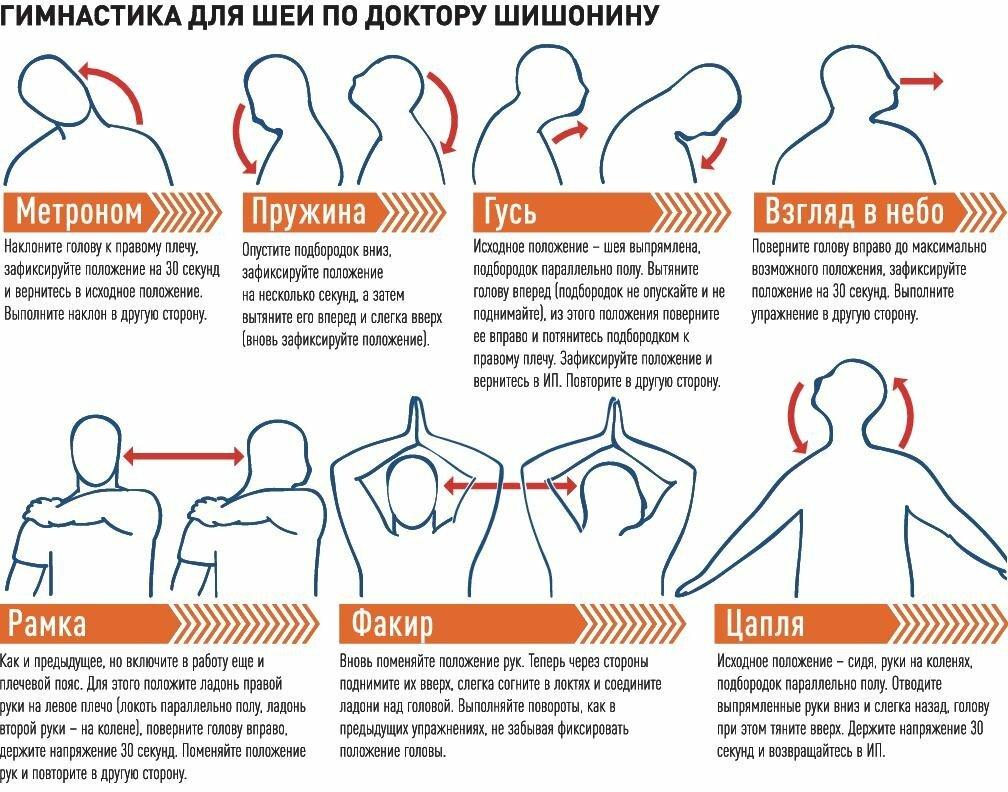 Гимнастика доктора шишонина