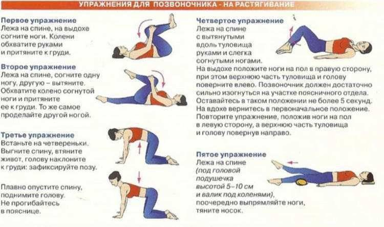 15 упражнений для всех отделов позвоночника