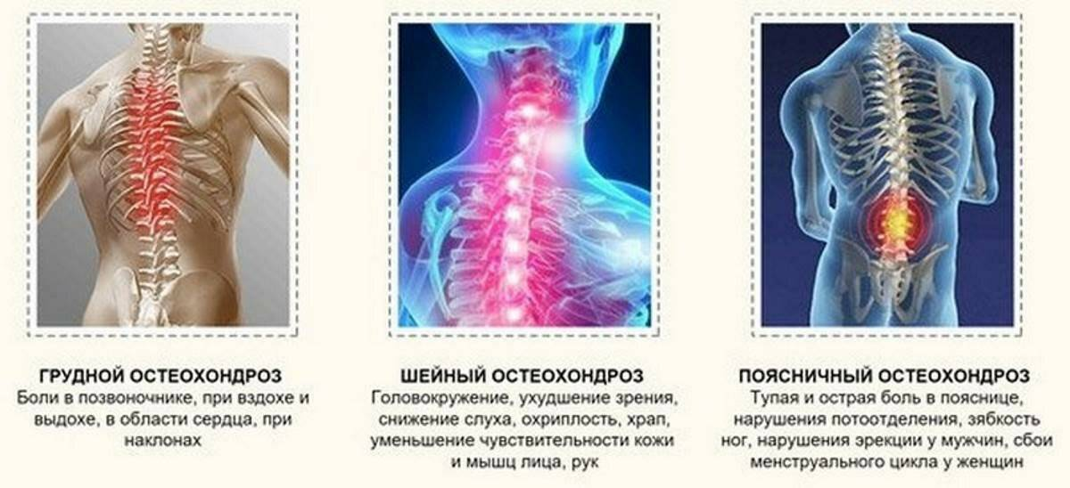 Пульсирующая боль в низу позвоночника