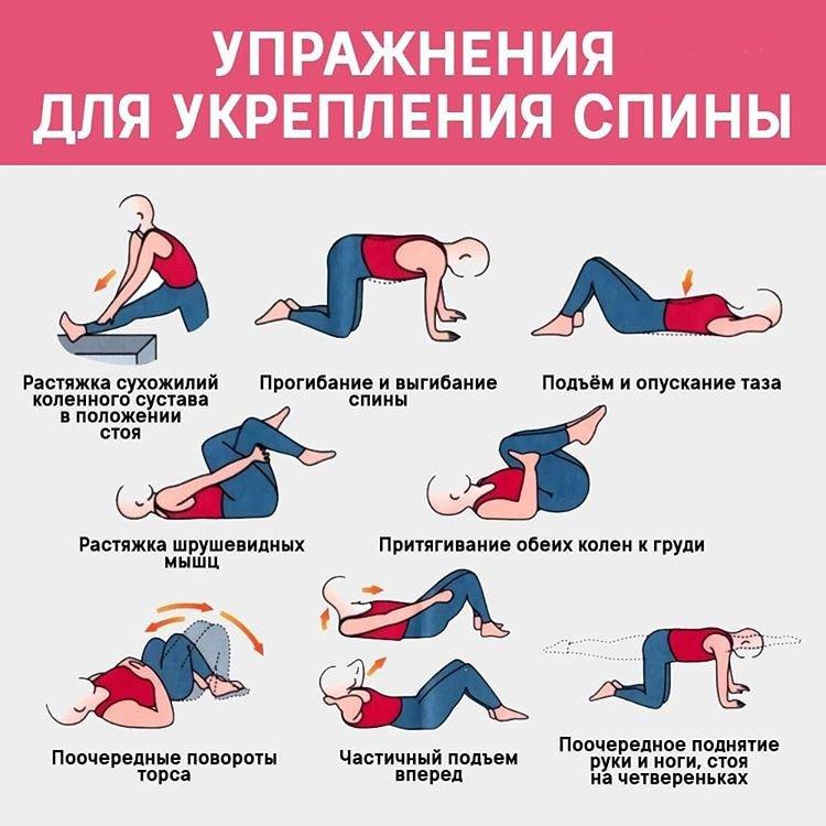 Упражнения для укрепления спины и позвоночника в домашних условиях без тренажеров!