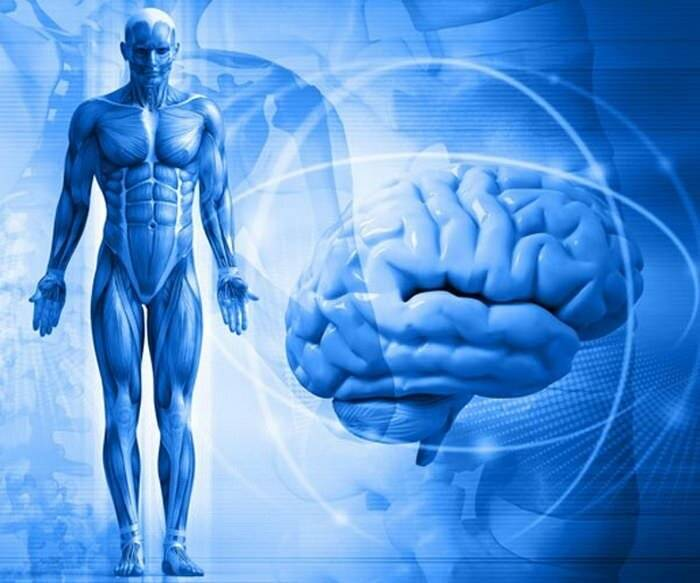 Психосоматика боли в животе, причины и лечение