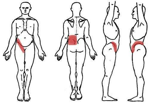 Болит спина в области почек: причины, симптомы, диагностика, лечение
