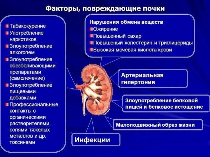 Как отличить боль в почках от боли в спине