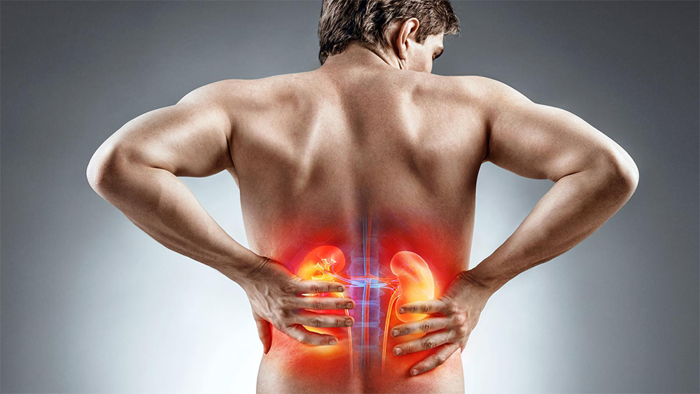 Почему спина в области почек и насколько это опасно?