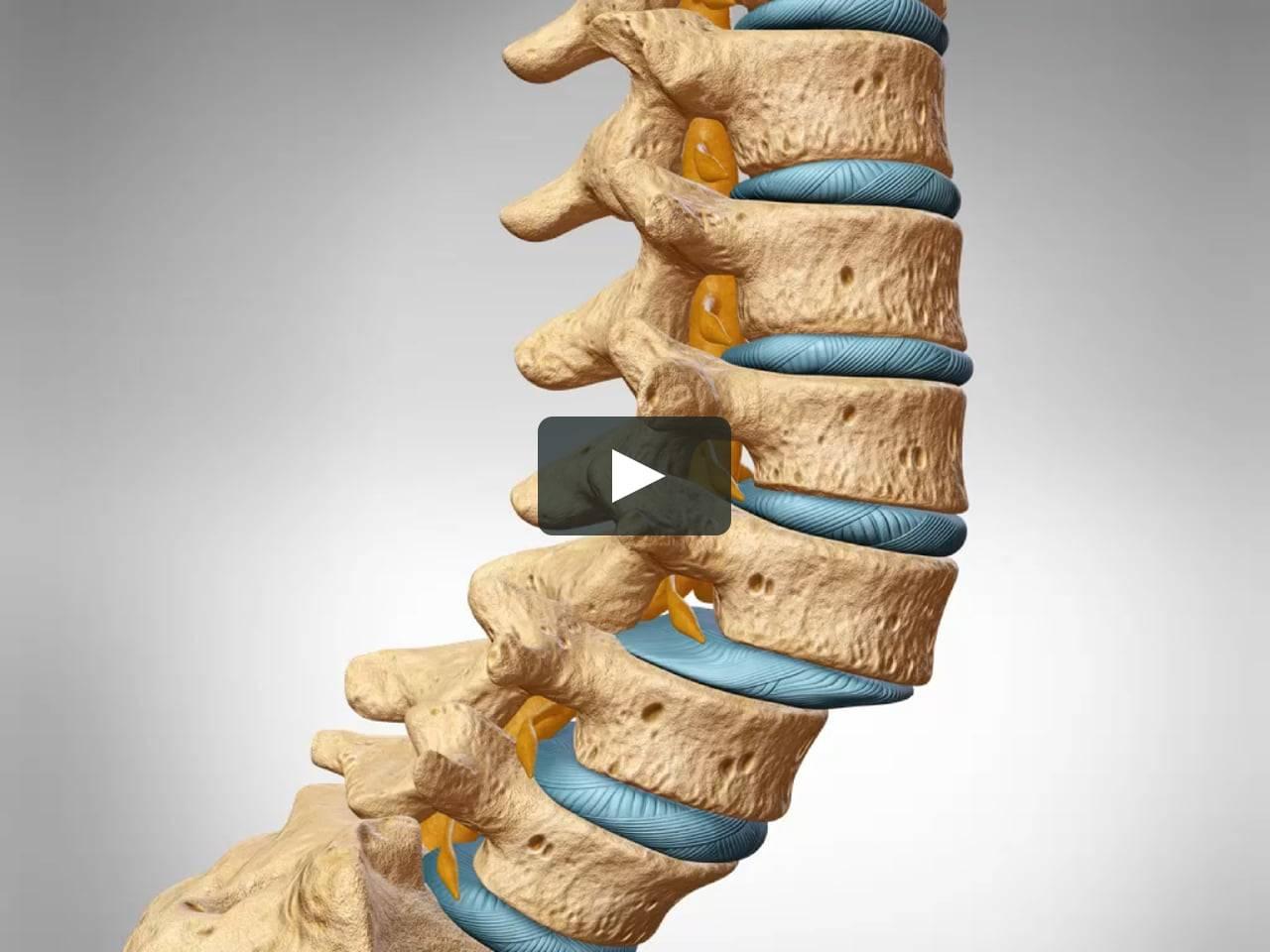 Околосуставной остеопороз: причины появления, симптомы и способы лечения, прогноз