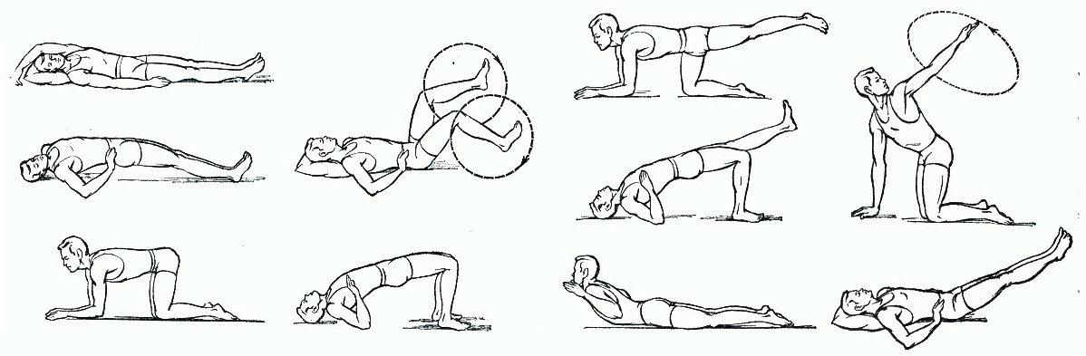 Синдром поражения «конского хвоста» у человека